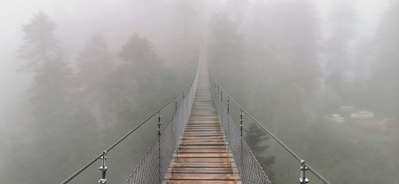 Embracing The Fog